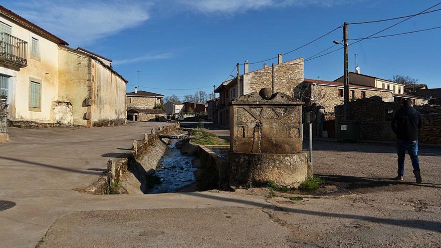 El proyecto Arraigo suma adeptos en Zamora y encandila a 40 pueblos