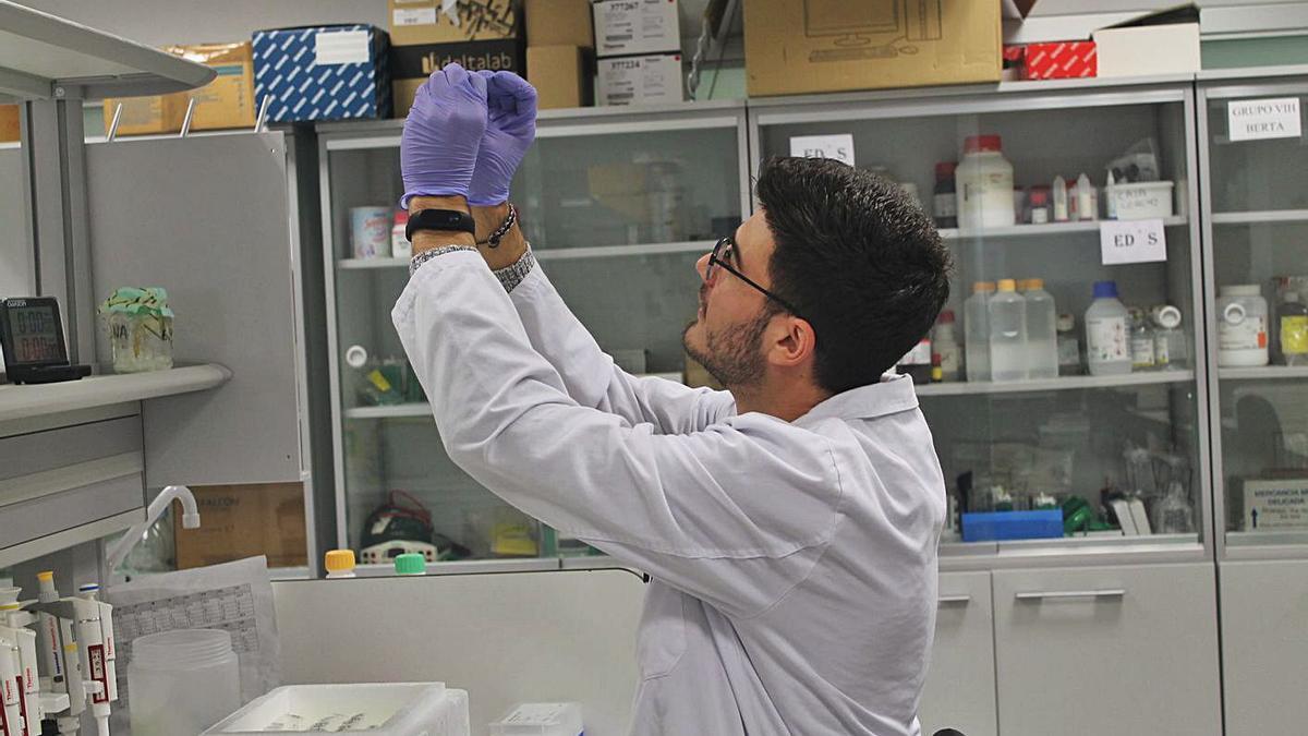El joven investigador Roberto Lozano trabajando en el Hospital La Paz de Madrid.   Cedida