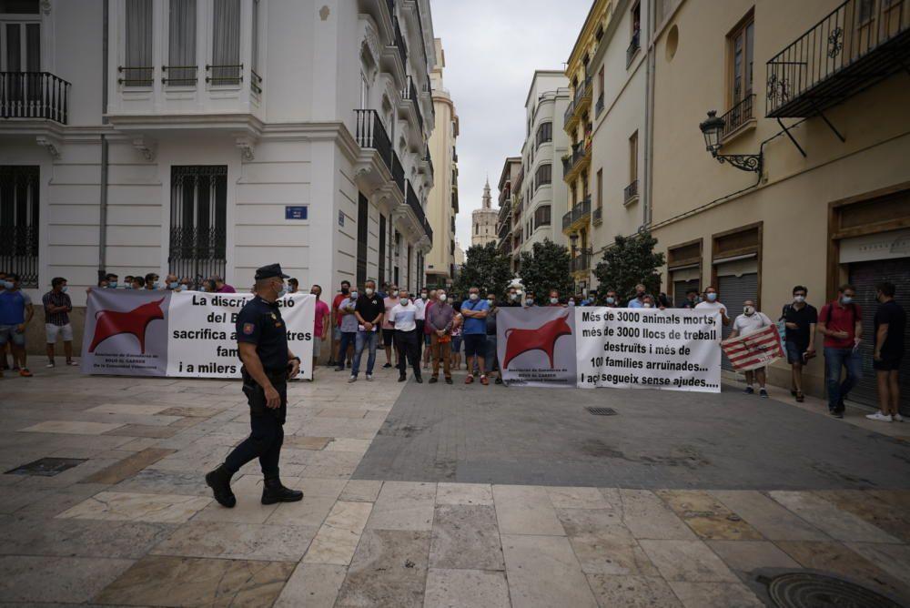 Protesta taurina y ganadera contra la falta de ayudas al sector en València