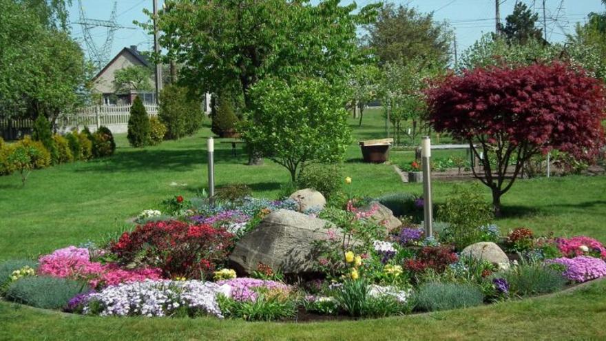 Investigan la importancia de los jardines urbanos contra el cambio climático