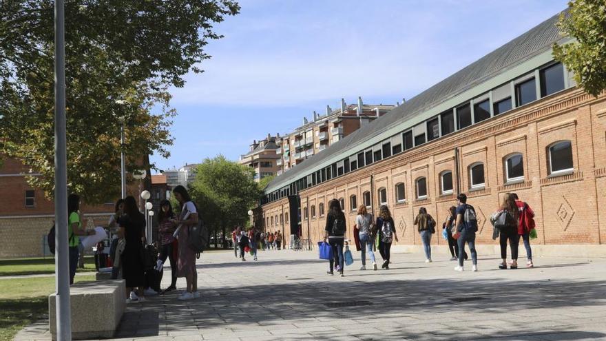 Alumnos en el Campus Viriato.