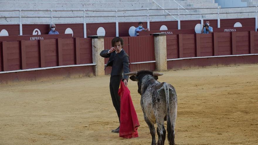 Las corridas de toros podrían regresar a La Malagueta en agosto