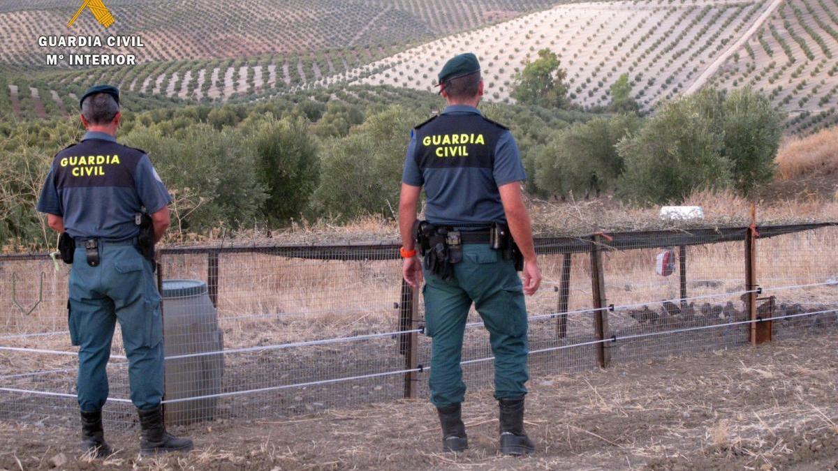 Dos agentes del Seprona, en Vélez.