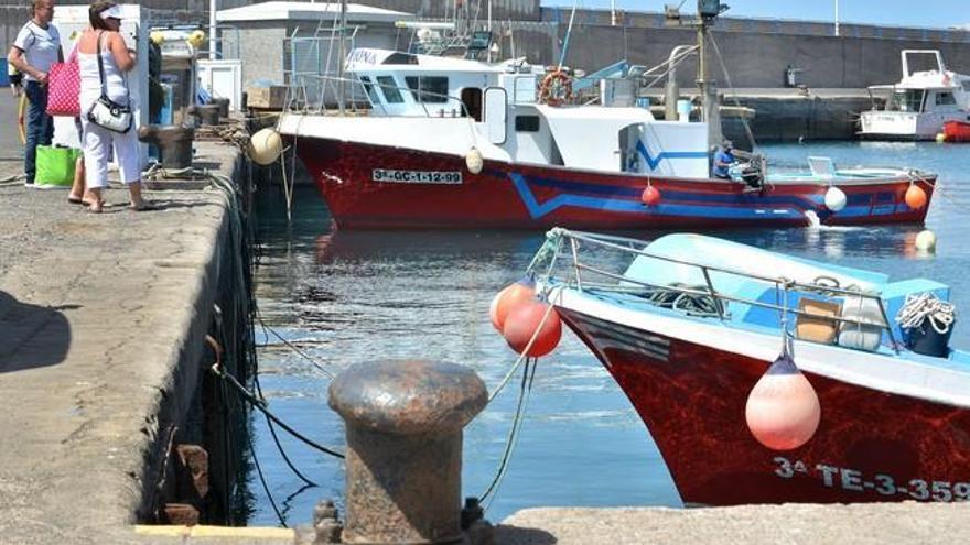 El Gobierno reparte la pesca del atún rojo