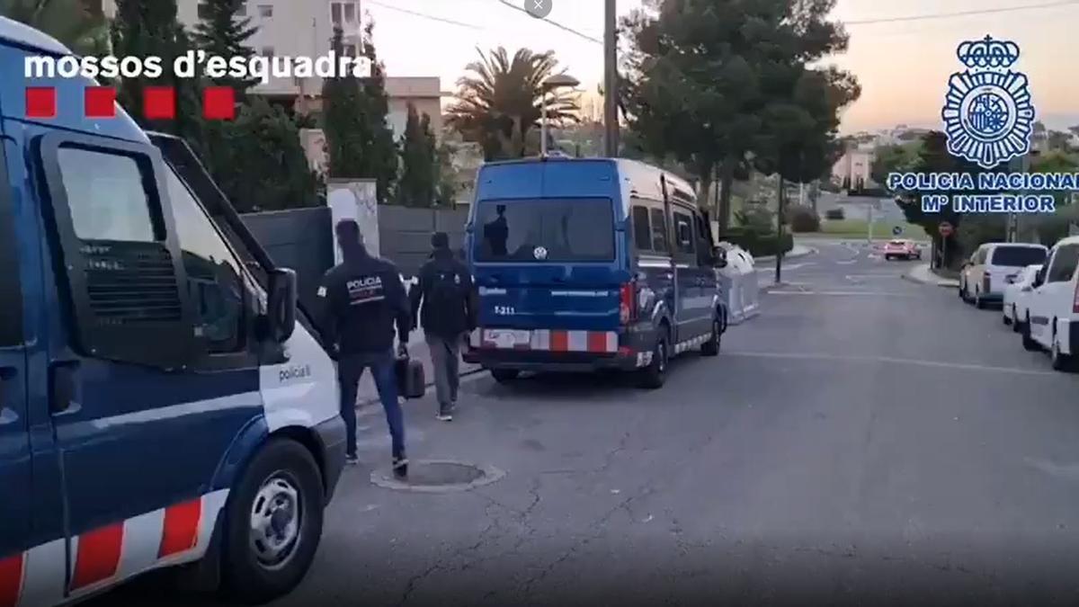 Operativo policial conjunto para desarticular la presunta banda dedicada a la expedición de falsos carnés de conducir.
