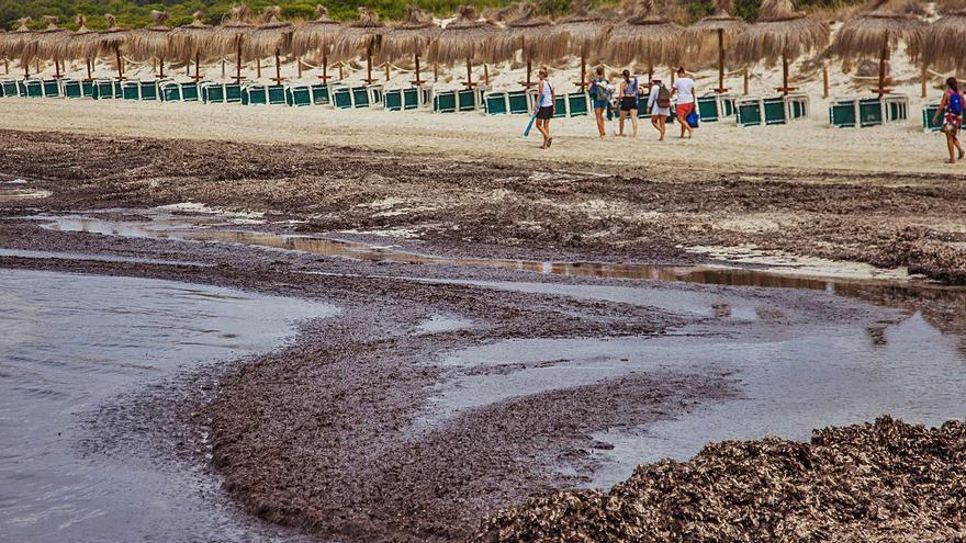 Madrid propone bombear la arena del fondo marino para regenerar las playas