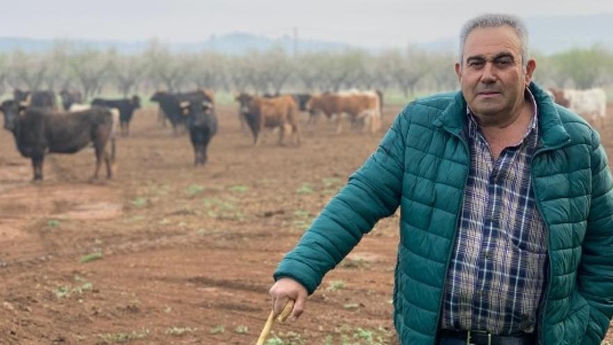 La situación de los ganaderos de reses bravas, en Medi TV