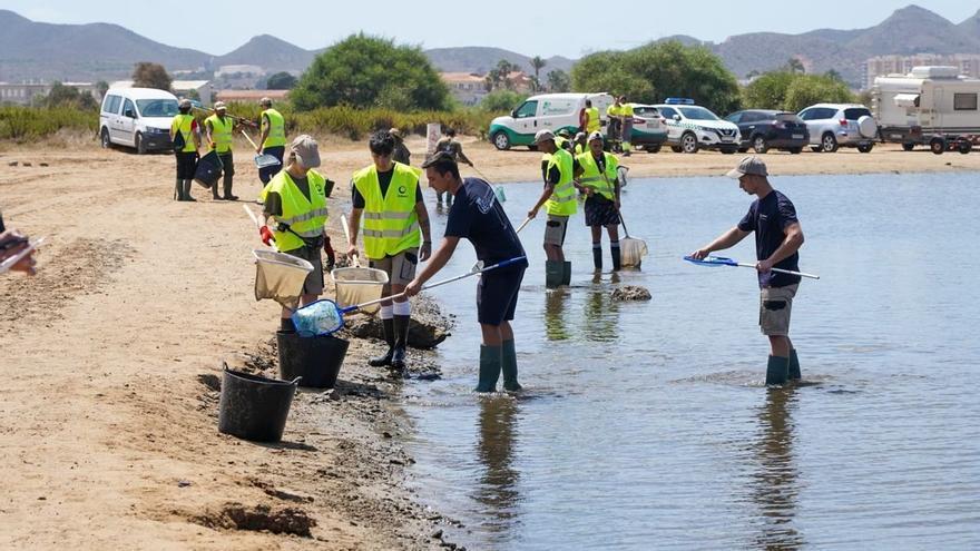 La destrucción del Mar Menor apunta a un drama ecológico en nuestro país