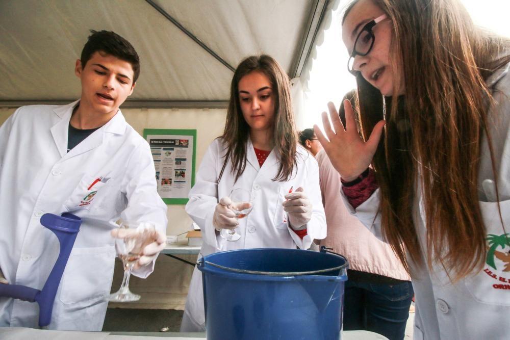 VIII Certamen de Ciencias de la Vega Baja
