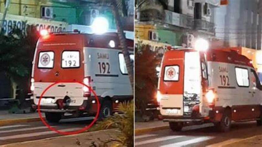 Un perro salta a una ambulancia para acompañar a su dueño al hospital
