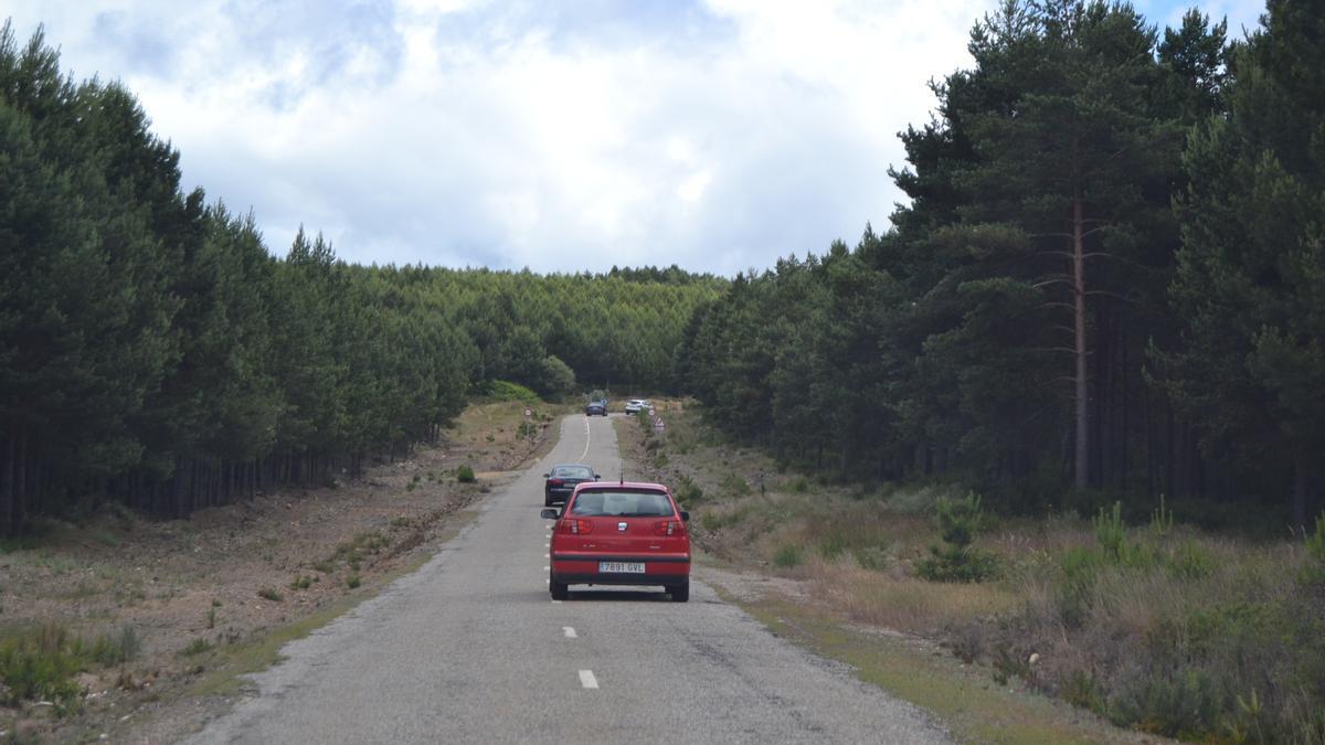Varios vehículos circulando por la carretera entre Rihonor y Puebla de Sanabria