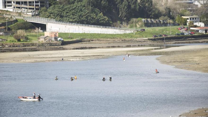 La Mesa de la Ría de O Burgo exige a Gobierno y Xunta acordar las compensaciones a mariscadores