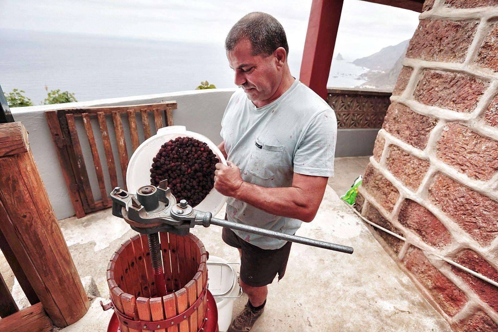 Vino de mora elaborado en Taganana