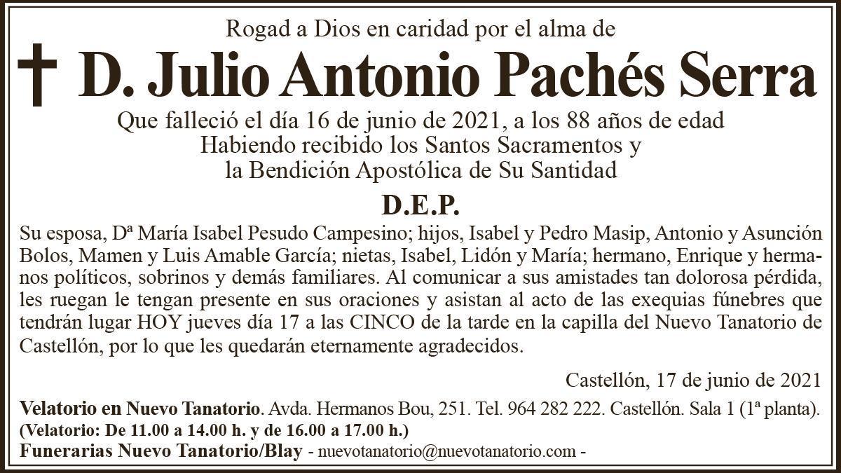 D. Julio Antonio Pachés Serra