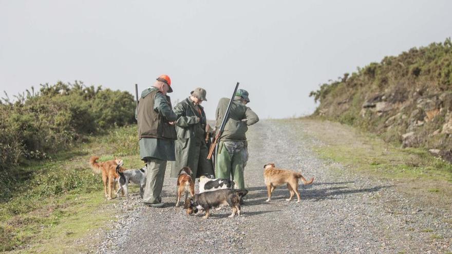El número de licencias de armas para caza cayó en Galicia en más de 4.400 desde el año 2017