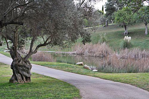 Das Dreieck zwischen Caimari, Moscari und Binibona zieht besonders viele ruhesuchende Urlauber an. Davon profitieren auch die Einheimischen