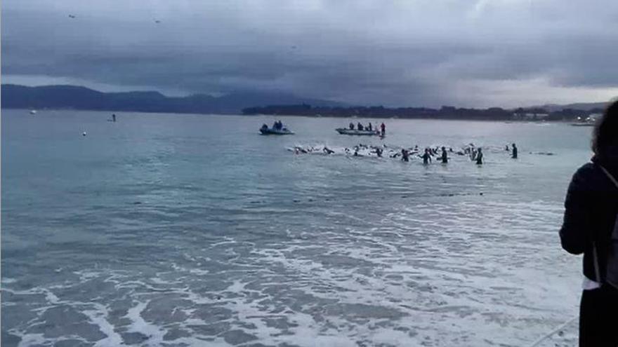 Arranca el Desafío Santander Islas Cíes