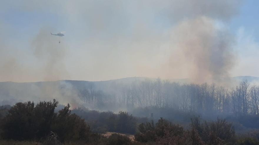 Medio Ambiente trabaja en la extinción de dos incendios forestales en Sanabria