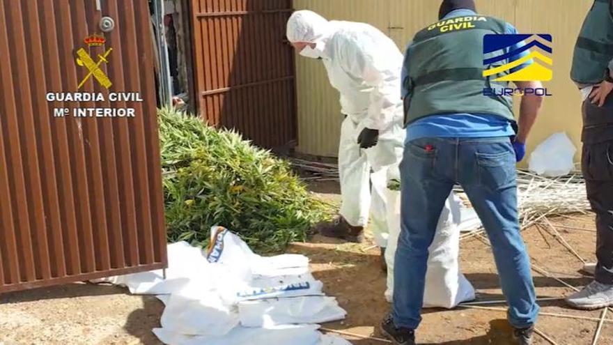 Un grupo se hacía pasar por empresas de reparto reales para transportar drogas por media Europa
