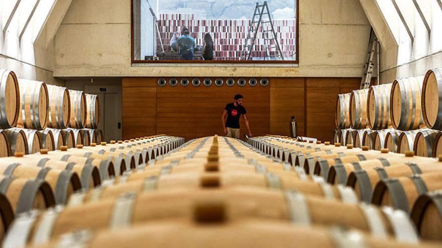 So kommt der Mallorca-Wein zu Ihnen nach Hause