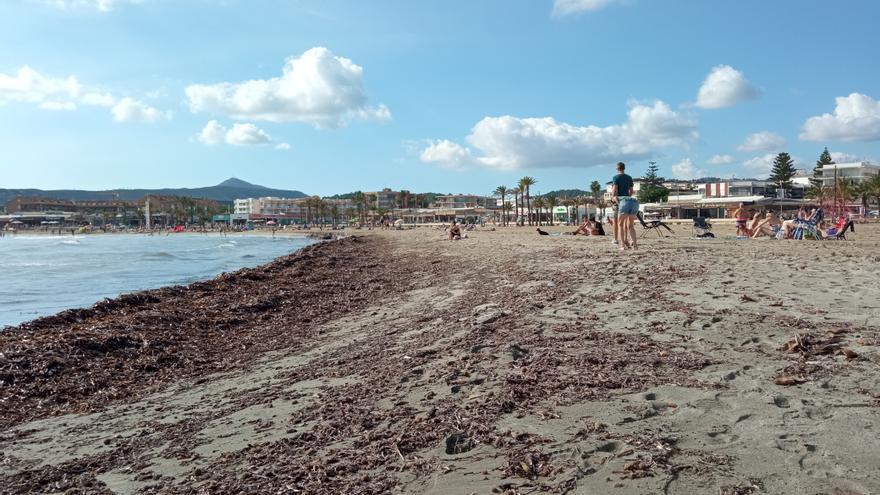 Ni rastro del vertido en la playa del Arenal de Xàbia