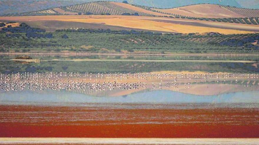 Varios espacios naturales de Málaga presentan altos niveles de contaminación