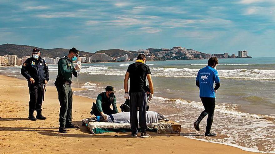 Un delfín muere en la orilla de la playa de Cullera