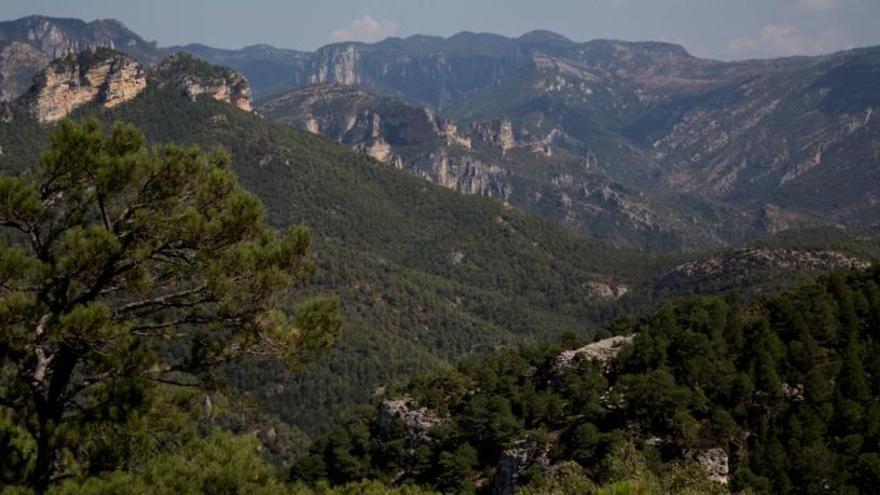 La Tinença de Benifassà: Un país tan montuoso y tan vestido de vegetales