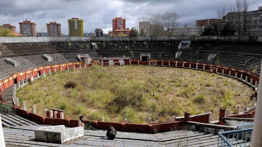 El Alcalde asegura tener luz verde de Cultura para cubrir la plaza de toros
