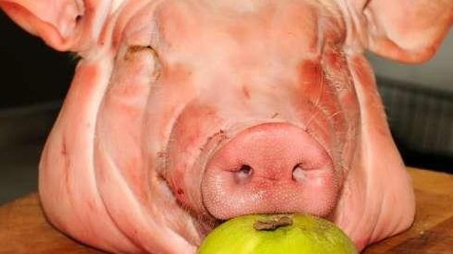 El cerdo en la dieta: las caretas del Carnaval
