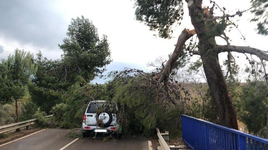 El viento deja rachas de 124 km/h en Morella
