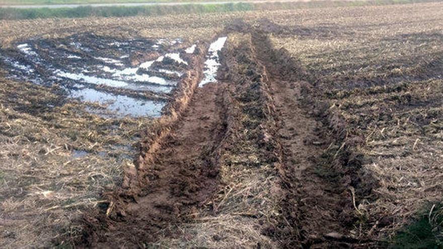 Unió de Pagesos tem incomplir la PAC pel retard en la sembra per les pluges