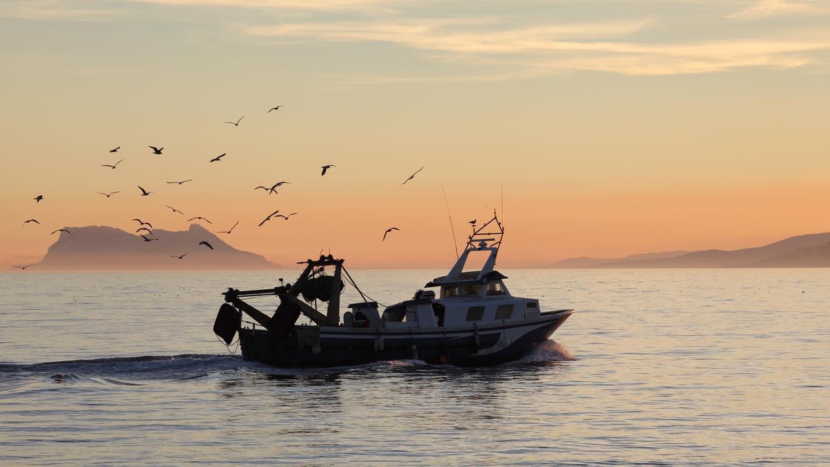Andalusian fleet fishing boat