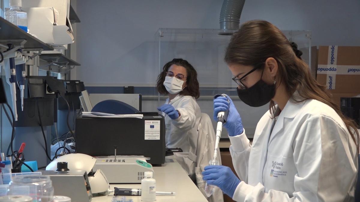 Investigadores valencianos le siguen la pista al coronavirus