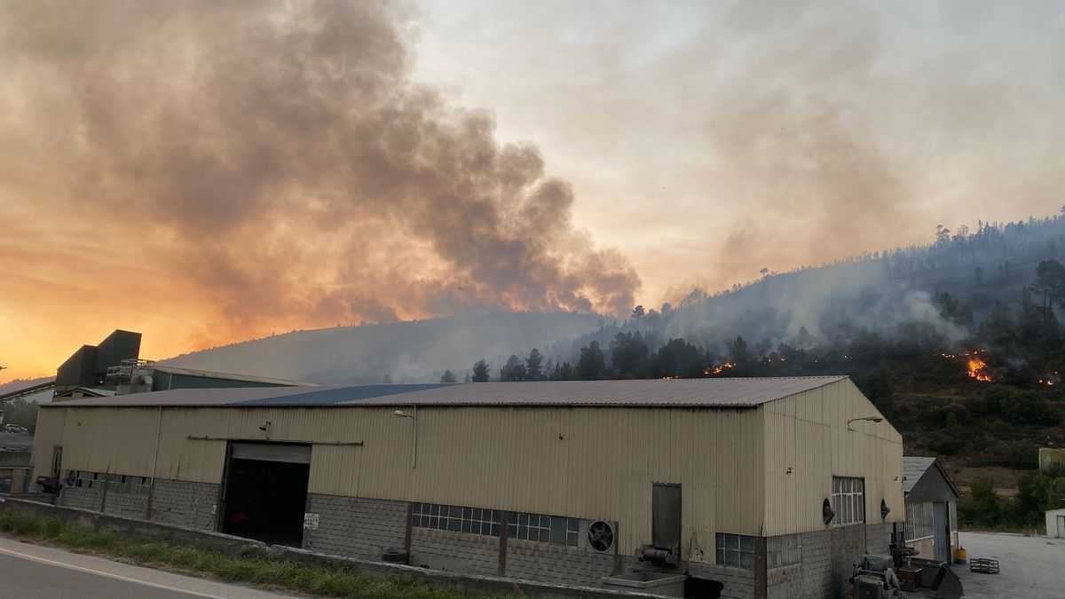Incendio forestal en Carballeda de Valdeorras