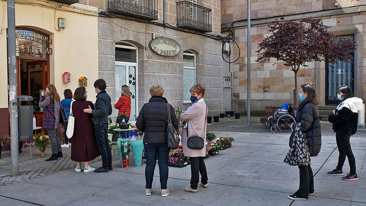 Colas formadas en una floristería de Zamora capital. |