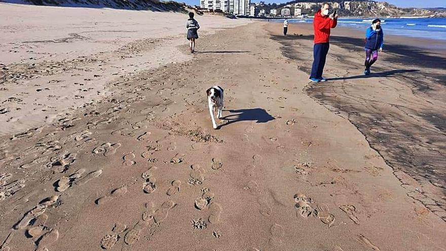 El Seprona investiga una serie de manchas de carbón halladas en la playa de San Juan