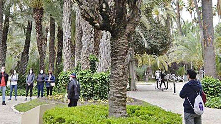 El alcalde pide a Diputación y Gobierno central que también se impliquen con el Palmeral