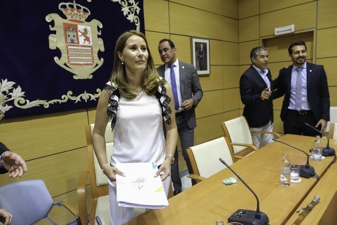 Constitución de Gobierno del Cabildo de Fuerteventura