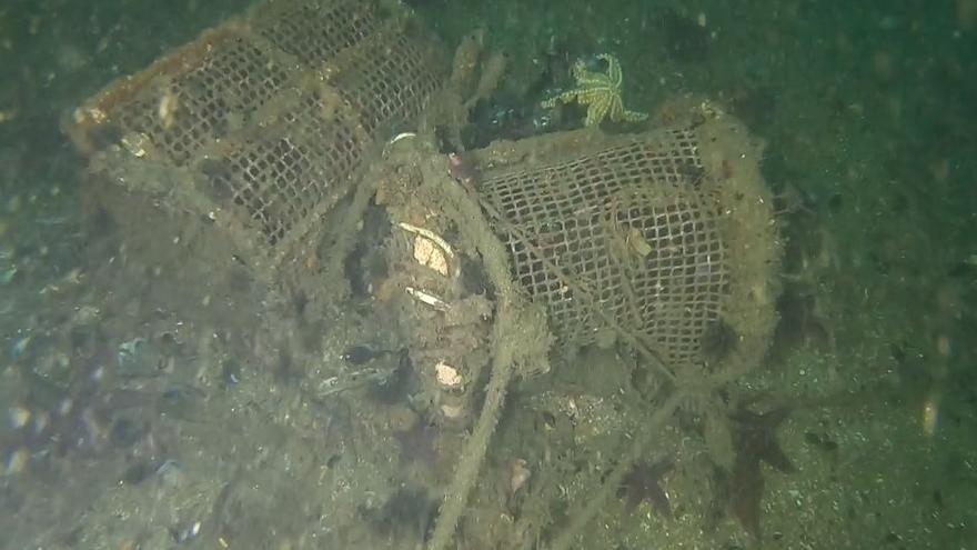 El Puerto inicia la limpieza de fondos en el Muelle de Trasatlánticos