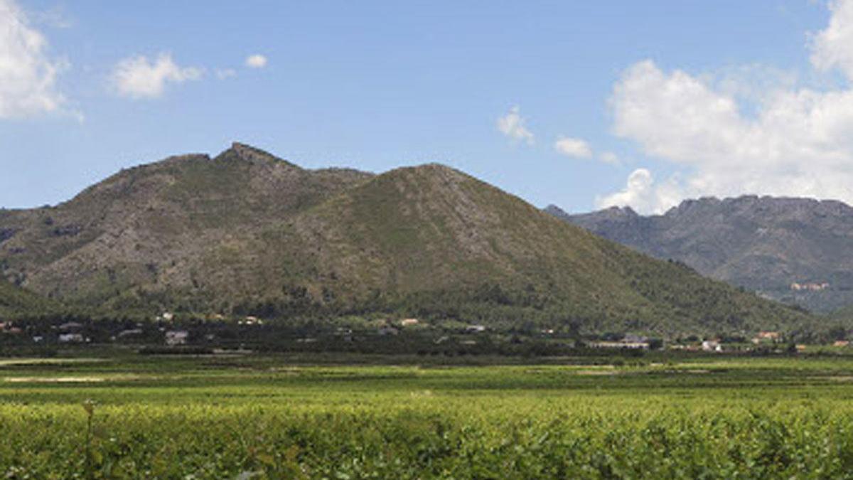Bodegas Xaló, una historia de Pasión por la Viña