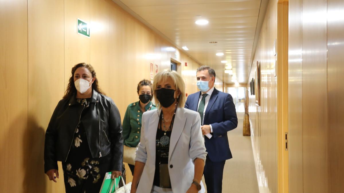 La consejera de Sanidad, Verónica Casado Vicente, se reúne con la secretaria general autonómica de SATSE Castilla y León, Mercedes Gago López.