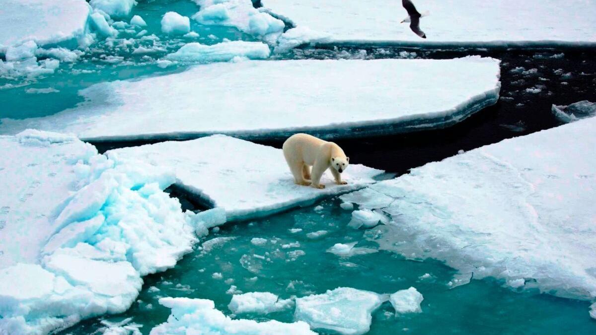 El Ártico se calienta tres veces más rápido que el resto del planeta