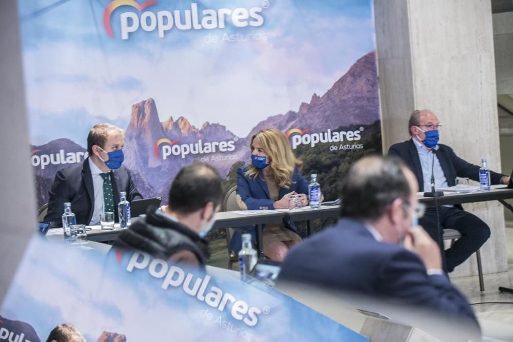 Comité regional del PP