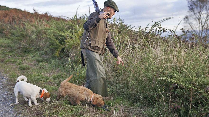 La temporada de caza menor concluye en las comarcas con más capturas de las esperadas