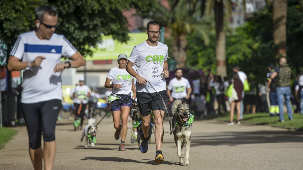 La III Edición de la Can We Run en Canarias se celebra en formato virtual