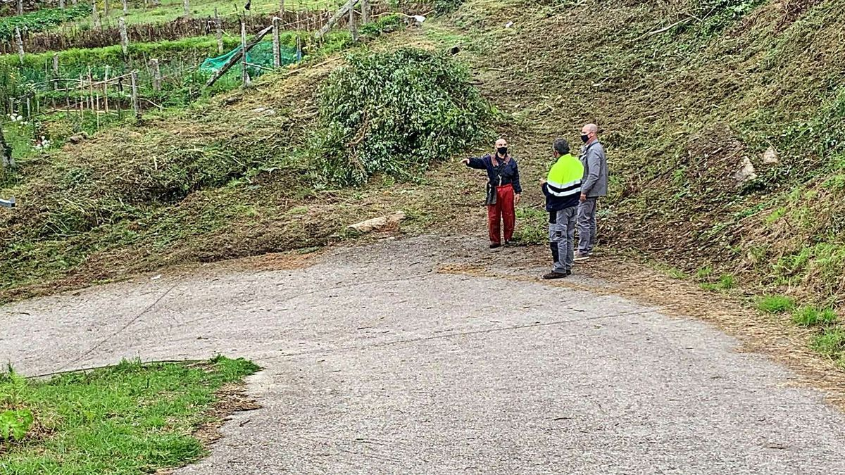 El desbroce realizado en el entorno de Sabarigo, en la parte alta de la parroquia de Cela.     // FDV