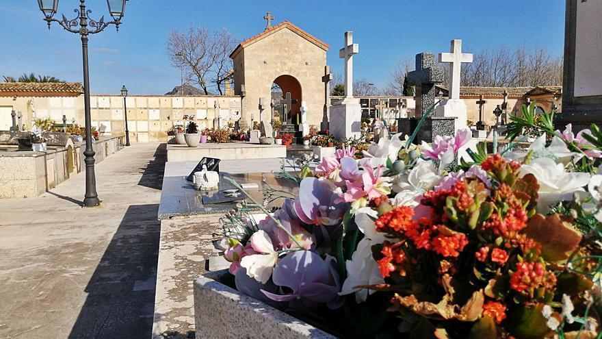Los misteriosos robos de flores en el cementerio de Alcúdia