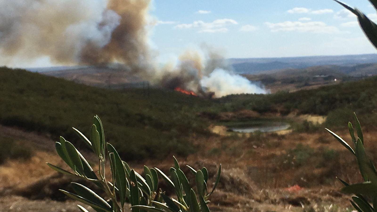 Incendio forestal en Cañaveral