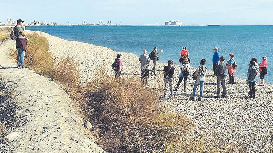 Más de 130 personas visitan el Marjal dels Moros